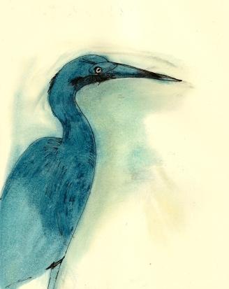 heron now