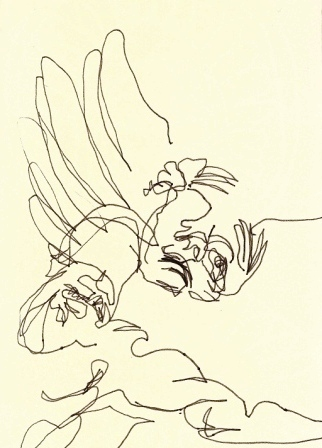 blind contour of the winged messenger